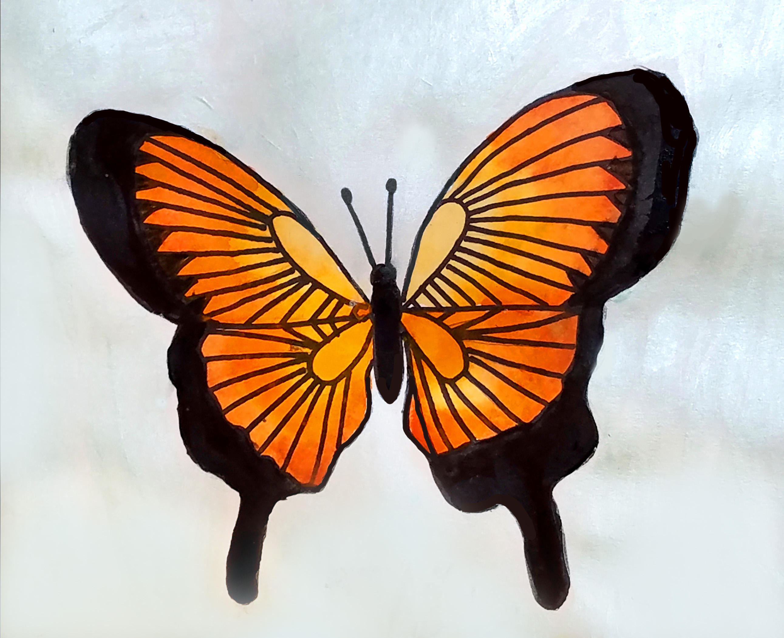 Start From The Body Of Butterfly While Watercolor Is Still Wet Use A Darker Shade Same Color To Make Gradient On Wings
